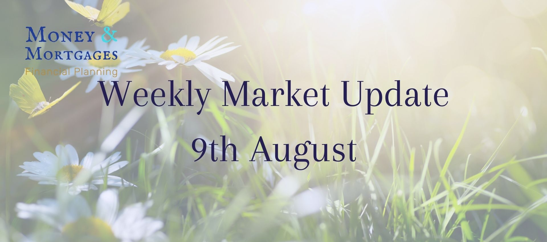 9th August stock market update
